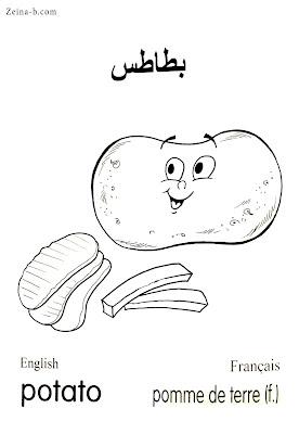 بطاطس - Potato - Pomme de terre