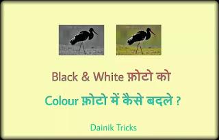 Black & White फ़ोटो को Colour फ़ोटो में कैसे बदले ? Without Photoshop