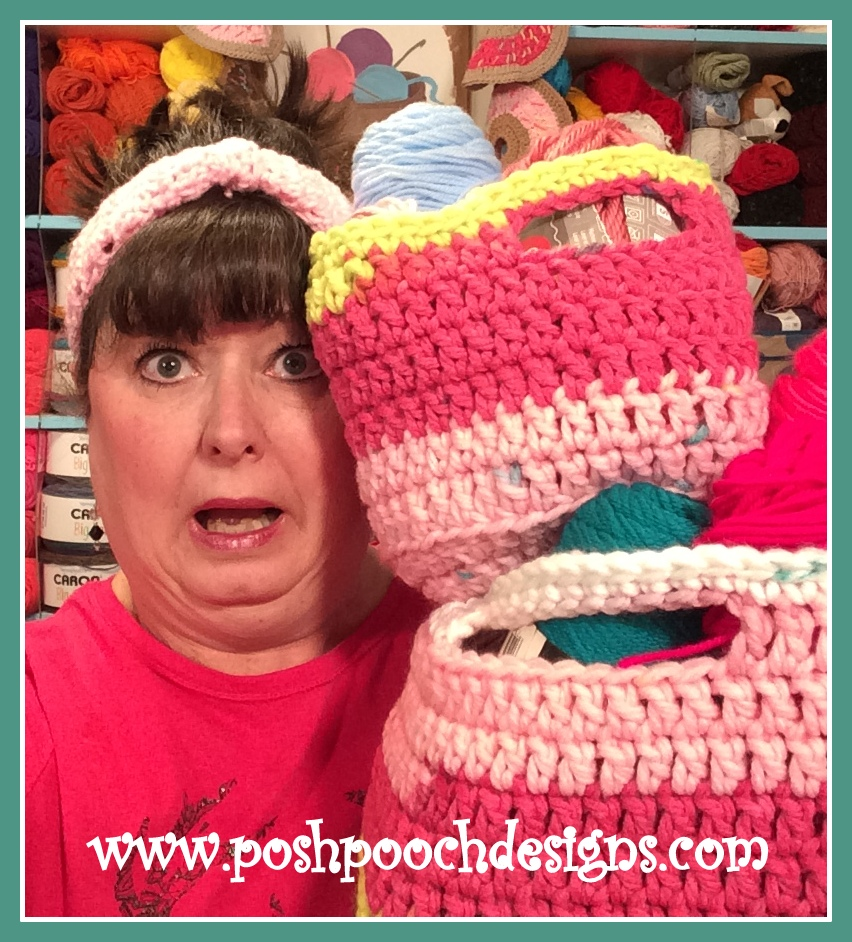 Posh Pooch Designs Dog Clothes: Spunky Chunky Baskets With