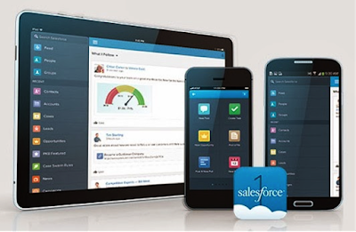 Salesforce Mobile application B2B