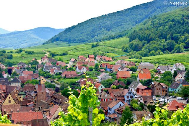 Vista dai vigneti del villaggio di Riquewihr