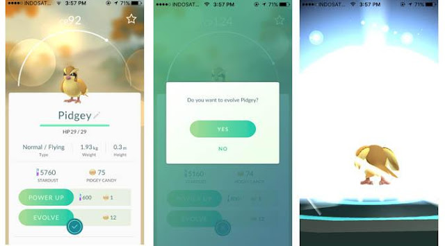 How to Play Pokemon Go for Beginners: Raise Level and Evolution