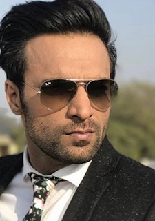 Shaleen Malhotra upcoming shows, age, facebook, brother, and diksha rampal, twitter, wife, images, latest news, wiki, biography