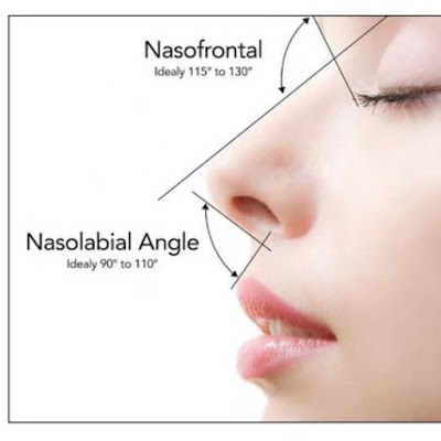 Nose drawing information