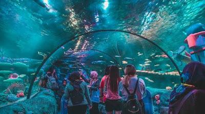 Sea Aquarium Malaysia