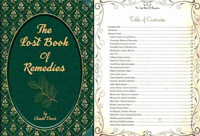 The Lost book of remedies Review - Rediscover Traditional Healing Methods That Don't Poison Our Body