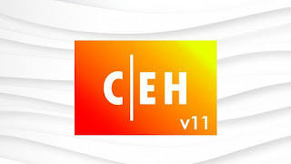 Certified Ethical Hacker CEH v11 Practice Test