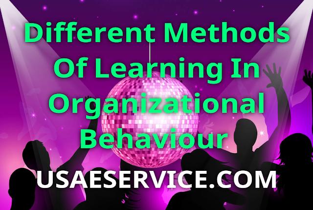 Learning Styles In Organizational Behaviour