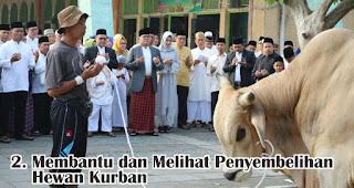 Membantu dan Melihat Pelaksanaan Penyembelihan Hewan Kurban merupakan salah satu kegiatan seru yang dilakukan saat Idul Adha