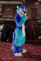 Neo's Den: Fursuits: Toony or Realistic?