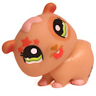 Littlest Pet Shop Small Playset Hamster (#1341) Pet