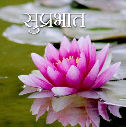 Good Morning Flower Images in Hindi