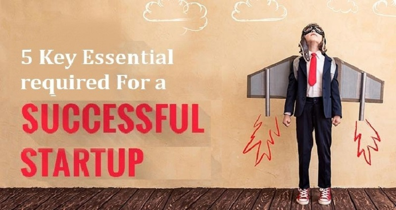 Successful Startup, Key Essentials Successful Startup, Startups, Business