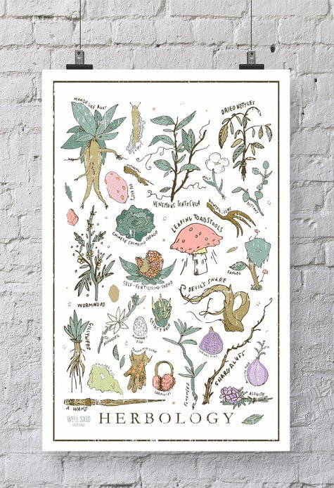Harry Potter Herbology Print