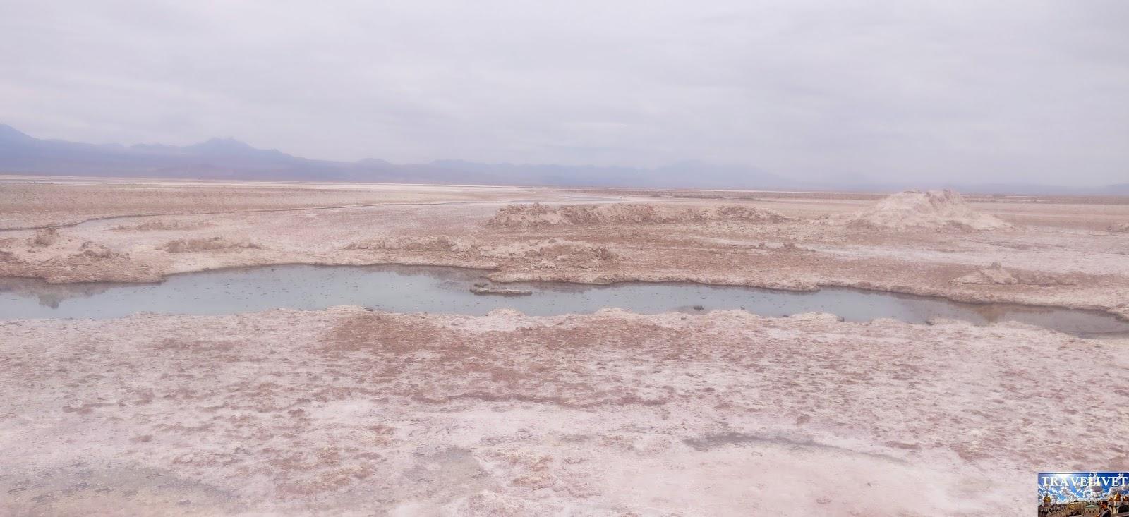 Chili Chile San Pedro de Atacama désert Laguna Chaxa