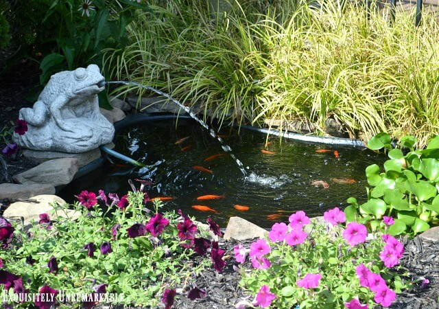 Backyard pond with frog fountain, petunias and fish