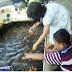 Wisata Kampung Ikan Jajag, Banyubening