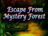 Top10NewGames - Top10 Escape From Mystery Forest