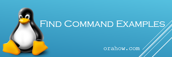 Find Command Best Examples