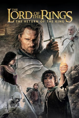 The Lord of the Rings The Two Towers (2003)