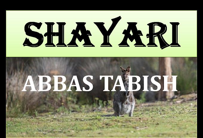Abbas Tabish Shayari