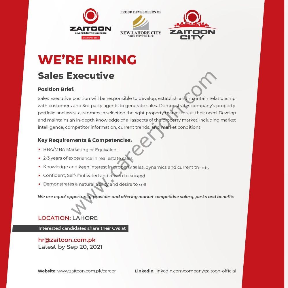 Zaitoon Group Jobs Sales Executive