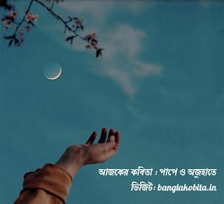 বাংলা কবিতা পাপে ও অজুহাতে