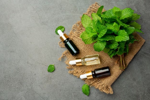 What are the benefits of spicy mint oil?