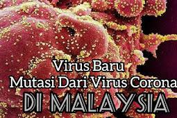 Virus Baru Ditemukan Di Malaysia