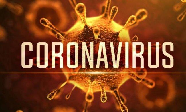 Tim Medis WHO Siapkan Tim Internasional untuk Selidiki Asal Usul Virus Covid-19, naviri.org, Naviri Magazine, naviri majalah, naviri