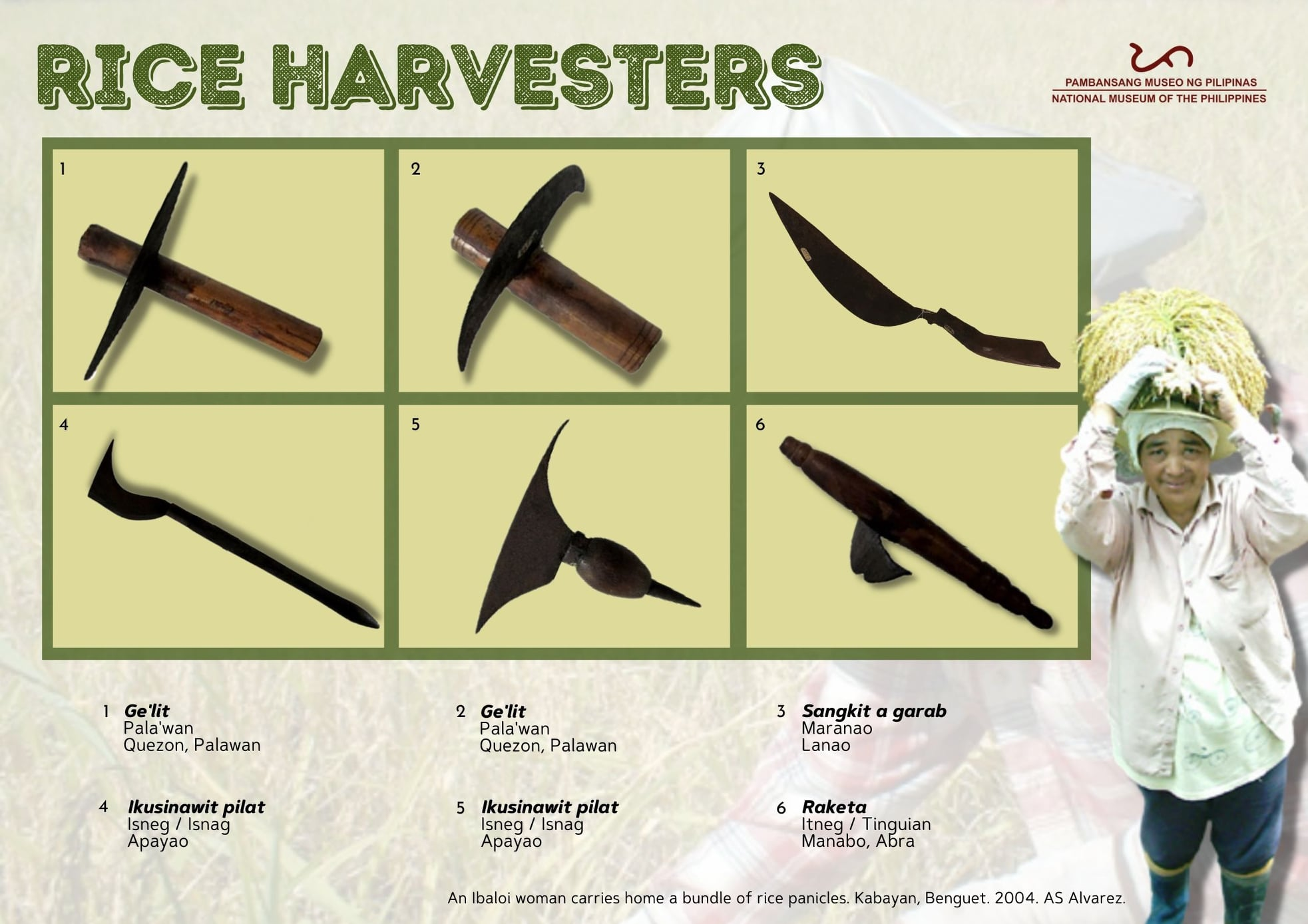 traditional tools used by the different agricultural communities in the Philippines to harvest unhusked rice