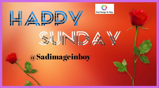 Happy Sunday Images | happy sunday good morning gif, happy sunday good morning