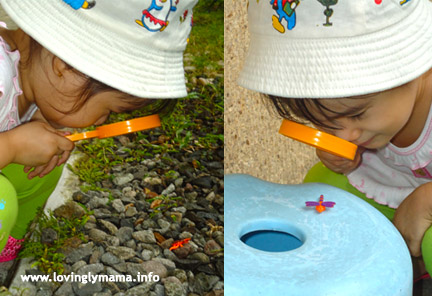 outdoor activity for kids