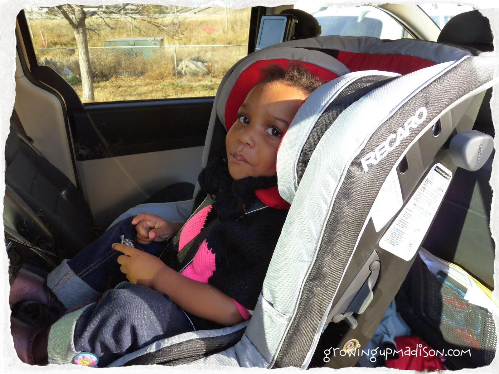 RECARO Performance Ride Convertible Car Seat #Review #Giveaway ...