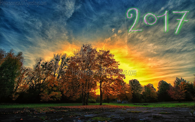New Year 2017 Nature HD Pictures Download For Desktop PC