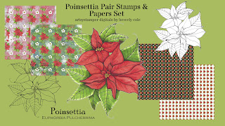 https://www.etsy.com/listing/719271010/poinsettia-pair-digital-stamp-and-paper?ref=shop_home_active_20