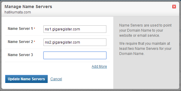 gambar setting name server domain