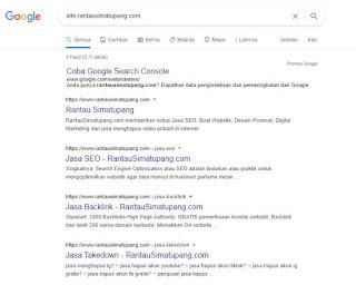 Cara Langkah Yang Benar Agar Website Terlihat Di Google