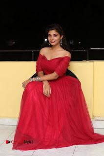 Actress Bindu Pictures in Red Dress at Attarillu Movie Press Meet  0276.JPG