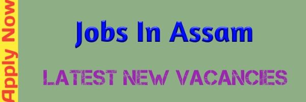 Job In Assam, Assam Govt Job