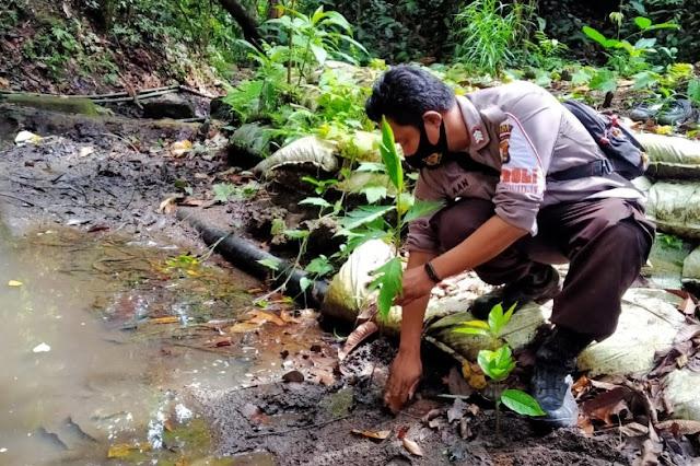 Peduli lingkungan, Bhabinkamtibmas Kadindi tanam 1000 pohon