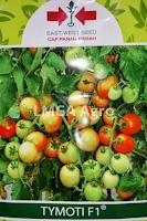 jual benih tomat tymoti,benih tomat tymoti,tomat tymoti,cap panah merah,benih tomat,jual benih murah,lmga agro