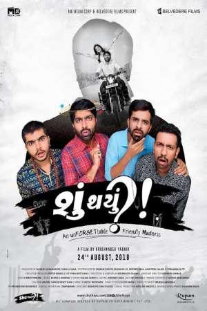 Download Shu Thayu (2018) Gujarati Movie 480p   720p   1080p WEB-DL 450MB   1.1GB