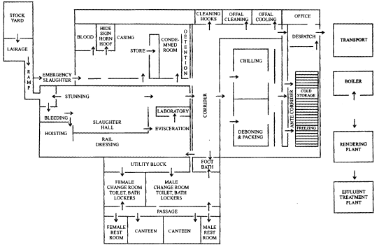 meat technology plant layout and design