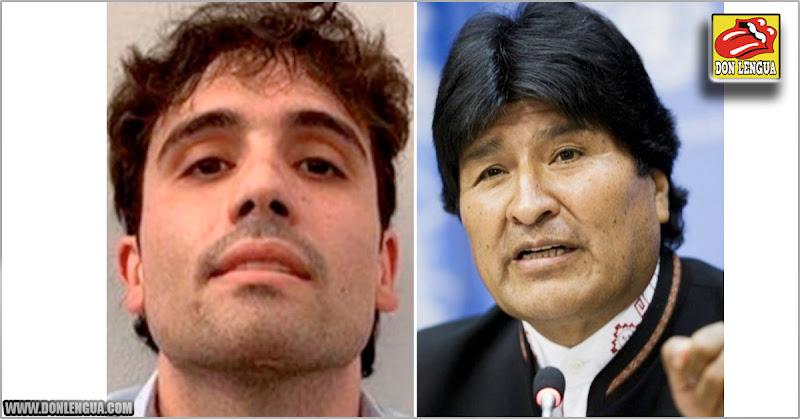 Evo Morales protegió al hijo del Chapo en Bolivia y le dio credenciales