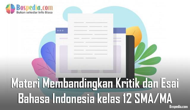 Materi Membandingkan Kritik dan Esai Mapel Bahasa Indonesia kelas 12 SMA/MA