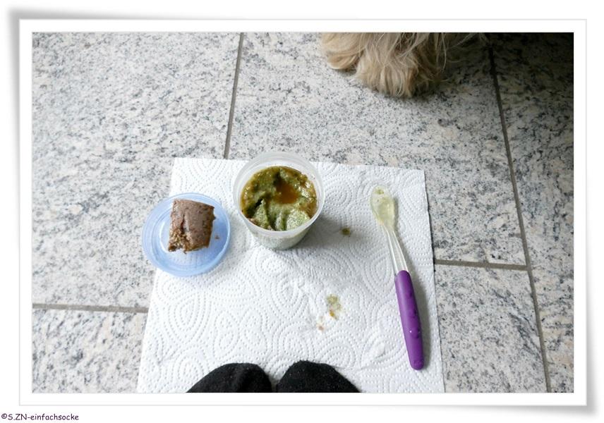 Hund Hat Socke Gefressen