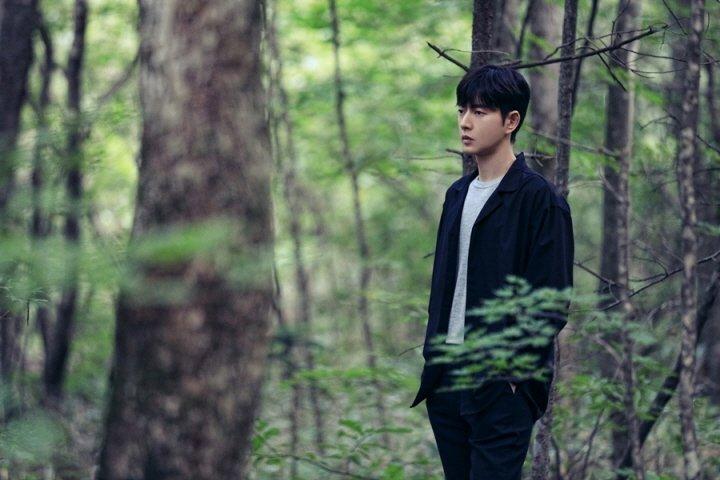 korean drama forest 2020