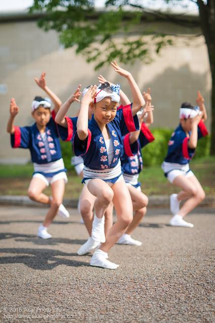 紅連の阿波踊り、小金井子供フェスタ、子供踊りの写真