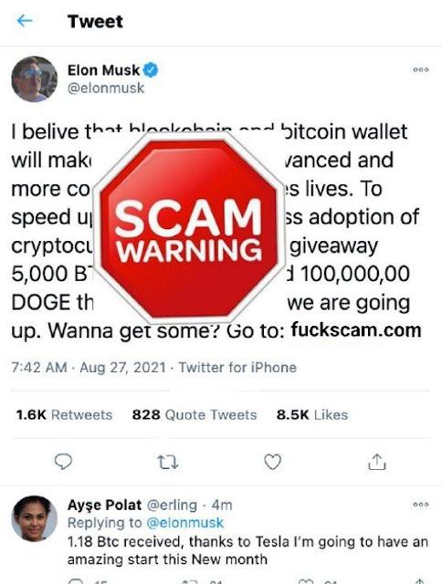 Scam Elon musk on telegram
